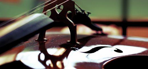 detail chevalet de violoncelle