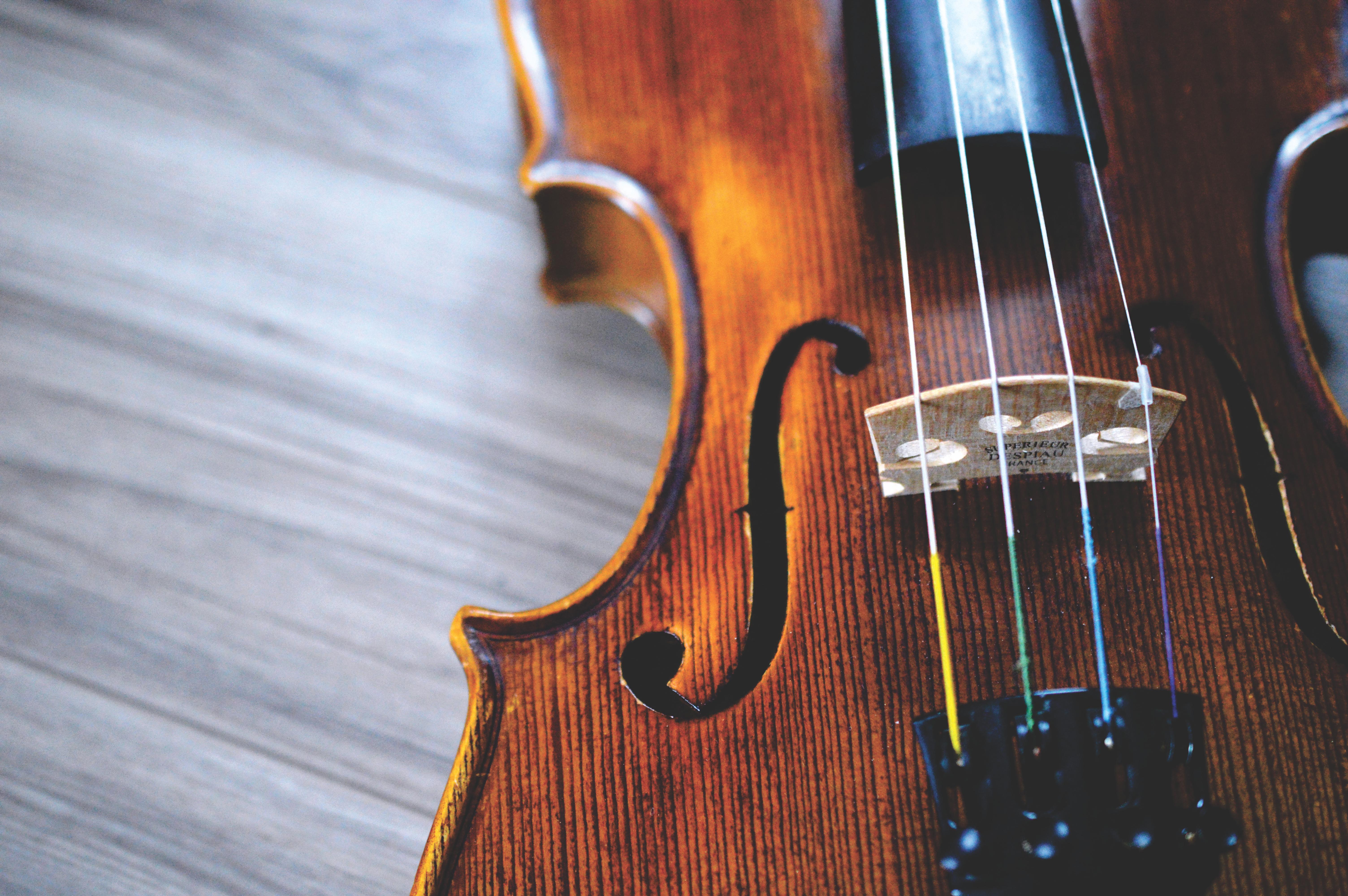 cordes de violon di arezzo cheville