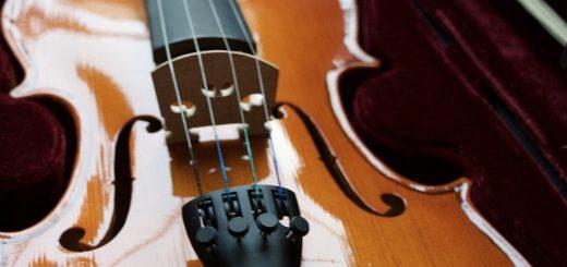 Zoom sur les vis d'accordage fin du violon près du chevalet