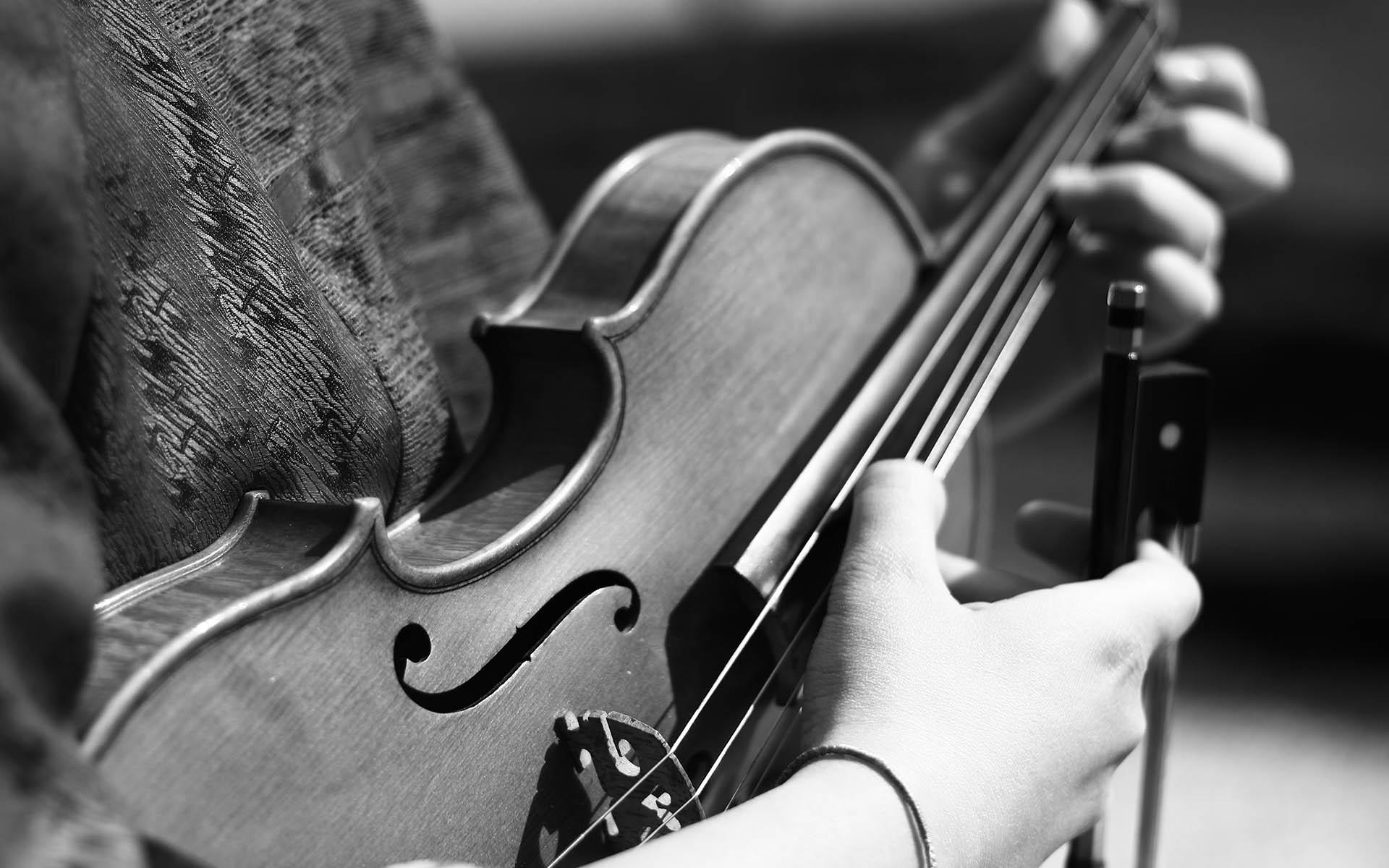 violon-librairie-musicale