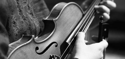 cordes de violon di arezzo