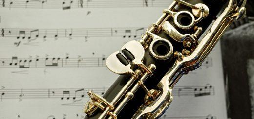 anche vandoren clarinette pour di arezzo