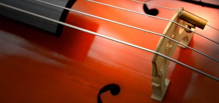 Zoom sur cordes de violoncelle et chevalet